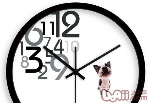 狗狗也可以当你的闹钟