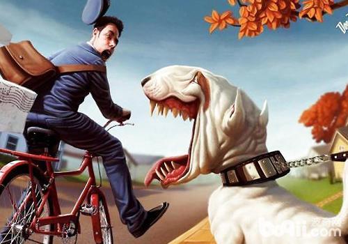 狗狗领地意识过强不是好事
