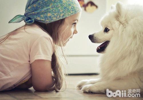 狗狗是否真的能闻出癌症