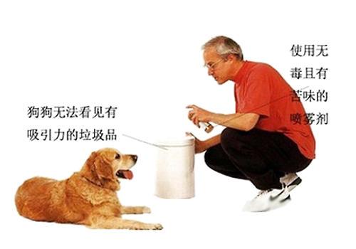 如何防止狗狗乱翻垃圾桶