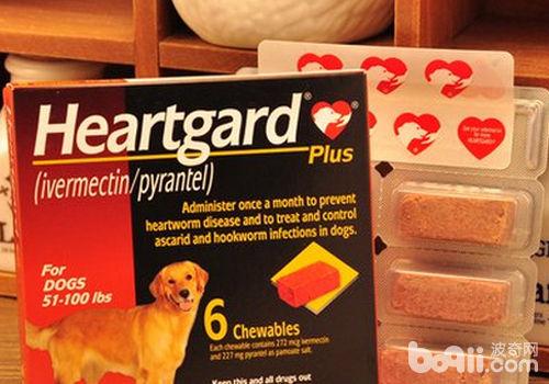 驱虫药可能导致狗狗出现哪些不良反应