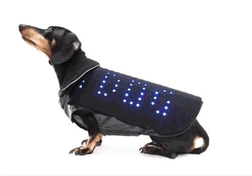 宠物智能马甲真的有用吗