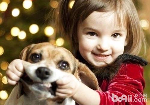 孩子与狗狗其实并不矛盾