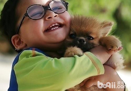 为什么有的狗狗喜欢攻击小孩
