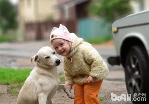 孩子害怕狗狗怎么办